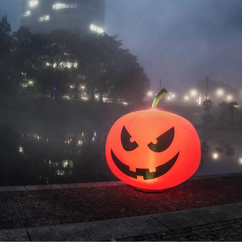 Pumpkin 001 Bunt Beitragsbild